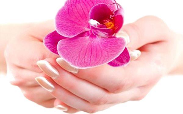 Pouze 450 Kč za nové gelové nehty včetně Francie jakékoli barvy. Vyzkoušejte gelové nehty za super cenu!