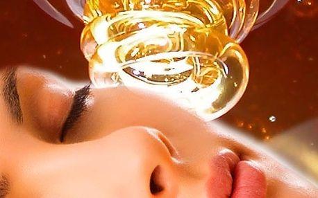 Hodinová medová masáž na Praze 5 jen za 800Kč! Sleva 45%! Dopřejte si medovou masáž, která Vás nejen uvolní, ale také pročistí Vaši pleť a účinně zabojuje proti celulitidě. Medová masáž je velmi vhodná také pro detoxikaci organismu, zlepšení imunity, rekonvalescenci a regeneraci. Pozor! Omezená nabídka 50 poukazů!