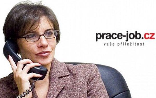 Nabídněte práci efektivním nástrojem Jen 300 Kč za vložení jednoho inzerátu s nabídkou práce na portál www.prace-job.cz ! Najdete zde kvalitní zaměstnance a nyní se slevou 75 % !