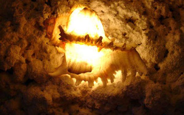 MEGA TIP!! 2 vstupy do solné jeskyně Aldiana jen za 75Kč se slevou 66 %!! Pobyt v solné jeskyni je velice účinnou podpůrnou léčbou a prevencí při chorobách plic, průdušek, srdečně-cévních, dermatologických, psychických a jiných. 45min kúra = 3 dny u moře.