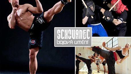 Za 70 Kč zvládnete hravě sebeobranu a zformujete krásnou postavu. Trénink Kickboxu, Eskrimy, Kick Your Fat a Funkčního - kruhového tréninku s 65% slevou.