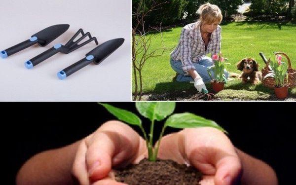Při sázení, přesazování a péči o rostliny na malých záhonech, v truhlících a květináčích se neobejdete bez malého ručního nářadí.