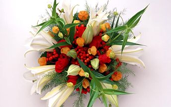 Rádi byste darovali květinu? Pak nepropásněte dnešní nabídku Ampliónu a nechte si uvázat kytici dle vašeho výběru se slevou 50 %. V Kouzelné zahradě vědí, jak na to!