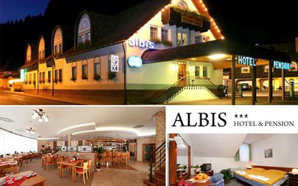 V hotelu Albis potkáte třeba i Krakonoše, když obcházet bude Krkonoše. 40% sleva na tři noci ve dvoulůžkovém pokoji se snídaní.