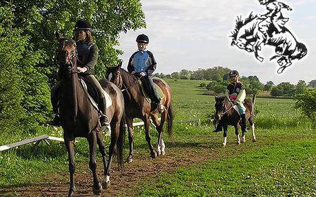 Vyražte na výlet ke koním do Cetkovic! Výuka jízdy na koni s instruktorem s 36% slevou za 160 korun! Možnost výletů - westernové městečko či Moravský kras.
