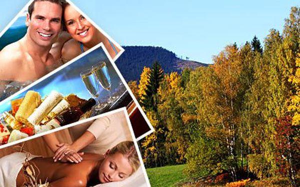 3denní wellness na Vysočině pro 2-6 lidí – apartmán, polopenze, sauna, výřivka, masáž a fitness. Dítě do 3 let zdarma + slevy na další wellness služby