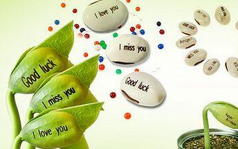 """Kouzelné fazolky se 14 různými nápisy nyní za pouhých 29 Kč! Zasaďte fazolku do květináče a vypěstujte si rostlinku třeba s nápisem """"Z lásky""""! Překvapte svého miláčka originálním dárkem se slevou 68 %!"""