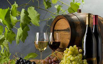 Vínečko bílé i červené se super slevou 25%! Udělejte si hezký večer v doprovodu kvalitního vína za akční cenu 150 Kč. Na výběr z osmi druhů! Vhodné i jako dárek – třeba vánoční!