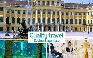 Užijte si výlet s celodenním programem ve Vídni jen pro vás a vaše děti. Celodenní akce s bohatým programem určeným především pro vaše děti i s animátorem za 349 Kč.