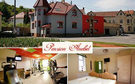 Přijeďte si odpočinout od každodenních starostí, při pobytu v Luhačovicích, kde královsky Vás pohostí. 40% sleva na podzimní wellness balíček v pensionu Anebel pro DVĚ osoby.