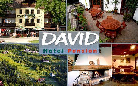 Užijte si romantický pobyt pro DVA v útulném penzionu David v Harrachově! Krásná příroda, svěží horský vzduch a bohaté sportovní vyžití s 55% slevou!