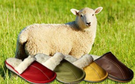 Nenechte si ujít akci na papuče, ledvinový pás, nebo vestu z pravé ovčí vlny v různých velikostech se slevou 50%!