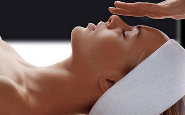 Jen 199 Kč za 90minutové celkové kosmetické ošetření pleti ve studiu v centru Plzně. Zažijte hodinu a půl relaxace, regenerace, rozmazlování a omlazení pleti s bezkonkurenční slevou 60%!