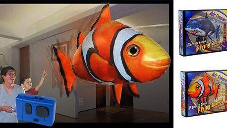 Létající ryba za bezkonkurenční cenu. Jedinečný dárek na narozeniny, nebo na Vánoce. Užívejte si úžasný svět fantazie!!!