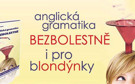 Anglicky snadno a zábavně! Kniha Anglická gramatika bezbolestně i pro blondýnky se slevou 41 %