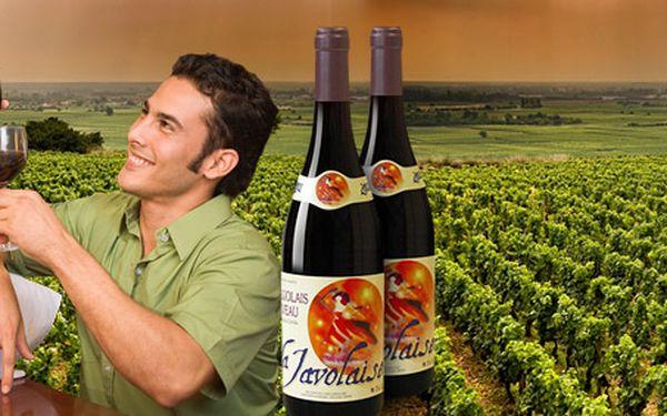 199 Kč za DVĚ láhve oblíbeného Beaujolais Nouveau. Přivítejte mladé víno z Francie se slevou 50 %.