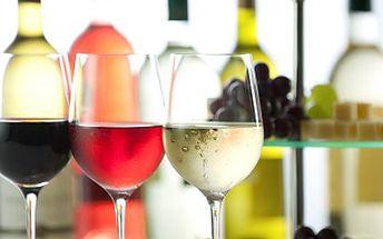 Ochutnejte svěží a mladá Svatomartinská vína, jejichž sezóna právě začíná. 32% sleva na láhev Svatomartinského vína AMPELOS dle Vašeho výběru a balení čaje HYLEYS.