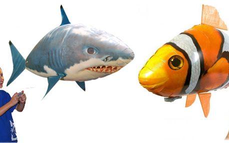 Úžasné létající ryby na dálkové ovládání - žralok nebo Nemo. Hračka roku 2011 v USA a Velké Británii!