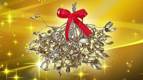 5 svazků vánočního živého pozlaceného nebo postříbřeného jmelí! Žádné Vánoce se nemohou obejít bez jmelí! Jeden svazek za neskutečných 25 Kč!