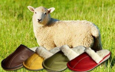 Pro veliký zájem obnovená akce na papuče, ledvinový pás, nebo vestu z pravé ovčí vlny v různých velikostech se slevou 50%!