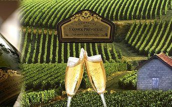 Exkluzivní šampaňské Yannick Prevoteau - DEMI! Výjimečný dárek k Vánocům nebo na Nový rok s puncem pravého luxusu! Jediný dovozce v ČR a to přímo z vinice!