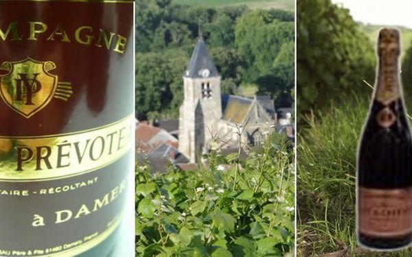 Vychutnejte si pravé Champagne z rodinného vinařství Yannick Prevoteau - Champagne Rosé.