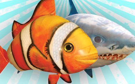 Skvělých 890 Kč za hit letošních Vánoc, létající rybu AIR SWIMMER! Nejnovější a nejmodernější verze létající ryby. Skvělá hračka pro děti i dospělé! Sleva 51 %