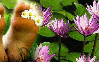 Iontová detoxikační koupel nohou napomáhá k bezpečnému vylučování toxinů z těla.Revoluční metoda detoxikace organismu k upevnění vašeho zdraví!!