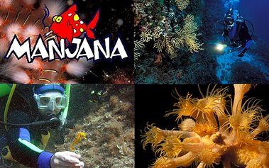 Kurz potápění v Chorvatsku s 50% slevou!