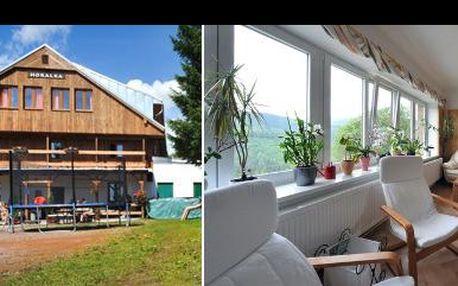 Pobyt pro DVA v nejoblíbenějším horském penzionu v Krkonoších! Užijte si během 3 dnů panenskou přírodu, ale i saunu pro oba. Vyrazte za odpočinkem se slevou 40 %!