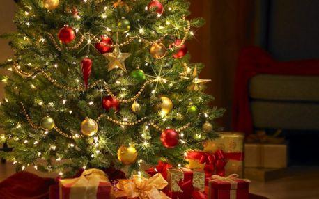 Stále ještě nemáte vánoční stromeček? Nezoufejte! V dnešní nabídce si můžete vybrat z nepřeberného množství STROMEČKŮ za jednotnou supr cenu 600 Kč! Chcete malý, velký, jedličku, borovičku nebo smrček? Ten váš vánoční stromek si zde jistě najdete!