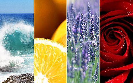 4 voňavé sáčky s 60% slevou! Provoňte si dům růží, mořem, levandulí či citrusem!