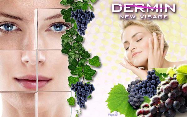 NAVRAŤTE SVÉ NAMÁHANÉ PLETI VITALITU POMOCÍ EXTRAKTU Z VINNÉ RÉVY! Máme pro vás kompletní regenerační péči obsahující 7 kosmetických procedur: odlíčení, úpravu obočí, povrchové čistění, masáž obličeje, masku, tonikum a závěrečnou péči!