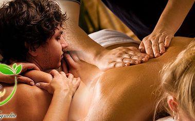 600 Kč za relaxační masáž celého těla v délce 90 minut v hodnotě 940 Kč. Dopřejte si zasloužený odpočinek !