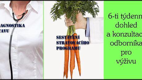 6- ti týdenní cyklus poradenství výživového poradce. Hubněte zdravě pod odborným dohledem profesionálů.