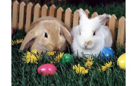 Velikonoční wellness rodinný balíček 6. - 9. dubna 2012