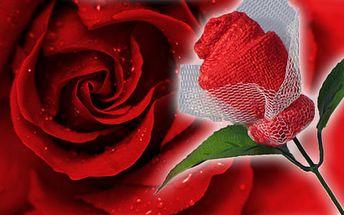 99 Kč za netradiční valentýnskou růži s květem z červeného ručníku. Dárek pro ženy, které mají rády praktické dárky. HyperSleva 54 % nejen na 14. února.