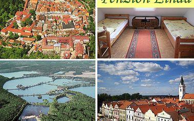 Týden v rodinném penzionu v centru Třeboně s 41% slevou! Malebné městečko nabízí kromě rybníků i prohlídku zámku nebo knížecího pivovaru.