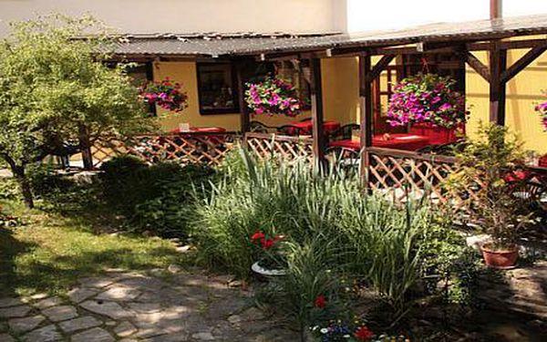 Penzion u lesů na hranici Moravského krasu v Olšanech, které proslavil Bolek Polívka, nyní se slevou 30%! 3 dny s polopenzí pro 2 v rodinném apartmánu s rohovou vanou jen za 1680 Kč.