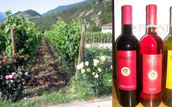 Pochutnejte si na slunné Itálii! Luxusní set 3 italských vín z vinařství PISONI za jedinečnou cenu 535 Kč! Exkluzivní červené, bílé a růžové víno vynikající chuti zpracované z těch nejlepších odrůd!