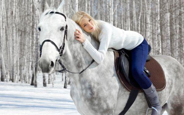 Vyberte si Shaunie nebo třeba Olympii a prohlédněte si svět z koňského hřbetu. V jízdárně Koloděje v Praze jen za 249 Kč.