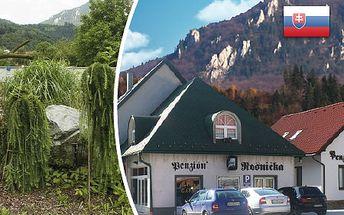 Nezabudnuteľný 3-dňový wellness pobyt pre 2 osoby s polpenziou v romantickom Penzióne Rosnička v Malej Fatre! V cene súkromná sauna, vstup do bazéna, vibromasáž a fľaša sektu! CityKupón platí až do 30. 06. 2012!