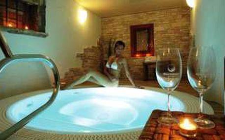 Víkendový relax pro 2 osoby ve Wine Wellness Hotelu Centro Hustopeče**** bude ideálním odpočiňkem v průběhu zimních měsíců.