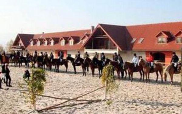 Pobyt na tři dny pro dva milovníky koní! Farma Vysoká - Chrastava u Liberce!