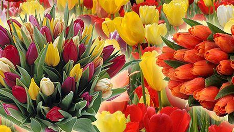 Valentýnská bomba! 10 nebo 19 krásných holandských tulipánů s velkým srdcem a s okrasnou trávou zabalených v tématickém obalu!