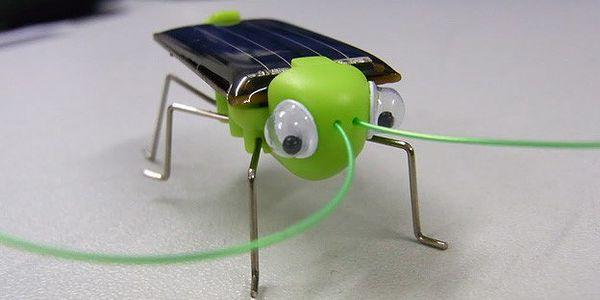 Solární kobylka - skvělá hračka nejen pro děti! Pouze 89,-Kč.