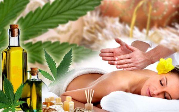 Vyzkoušejte něco nového a netradičního. Uvolnění při masáži konopnými oleji za neodolatelných 189 Kč! Ozdravná a relaxační masáž v jednom se slevou 52%!