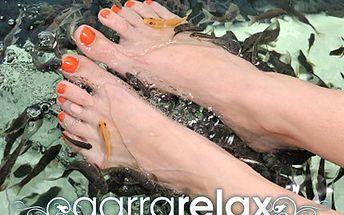 Dopřejte Vašim nohou péči od rybiček, působí i jako lék. 60% sleva na péči o nohy- přírodní peeling, relaxace a mikromasáž rybkami Garra Rufa v délce 30 minut.