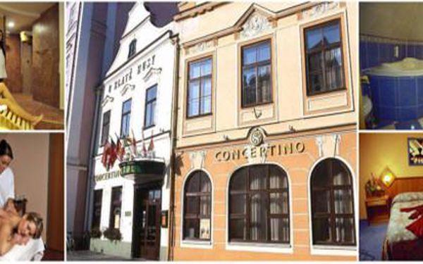 Potěšte svého miláčka pobytem na 2 noci s polopenzí v 4* hotelu Concertino za pouhých 2 995 Kč! Ta pravá valentýnská romantika v centru historického města.