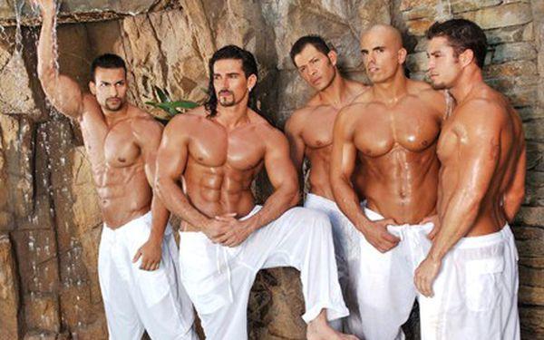 Užijte si zábavu s nádechem erotiky, tanečníci striptýzové show Vám předvedou skvělé triky. 249 Kč za taneční a striptýzovou show skupiny California Dreams.